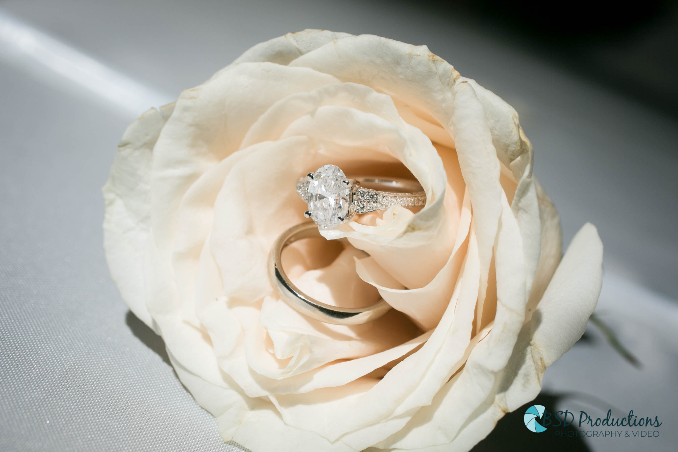 UH5A7880 Wedding – BSD Productions Photography